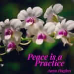 The Practice of Peace. Instead of Doing More (Whatever), To Be Peaceful, Which Doesn't Work, It's About Releasing