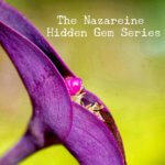 Hidden Gems - Acceptance of Yourself
