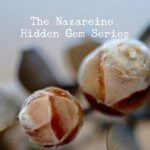 Hidden Gem Series - The Relevance of Duty.