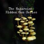 Hidden Gems - Nothing Matters Unless You make it Matter.
