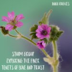 Study Group. Exploring the Finer Tenets of Love and Trust.