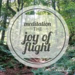 Meditation. The Joy of Flight.